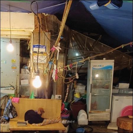 クナムと女ライディングステラ - 正規4集[モレネファンタジー]