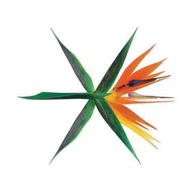 엑소 (EXO) - 정규4집 : THE WAR [Korean Ver.] [Regular A/Regular B/Private Ver. 중 랜덤발송]