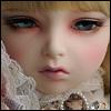 Lusion Doll - Royal Floraison ; Dahlia - LE10