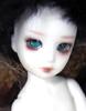 Elf Elly Boy - Banji (Black Short Hair)