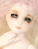 Elf Elly Boy - Lime (Pink)
