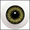 (국산) Life Like Acrylic 20mm G20LD-05