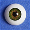 16mm - Optical Half Round Acrylic Eyes (MA04)
