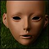 Zaoll Doll Suntan Muse Head