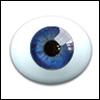 12mm Oval Real Type PaperWeight Glass Eyes - Cobalt (Real Type)