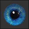 12mm Fantasy Flat Round Glass Eyes (FF01)