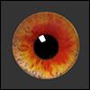 12mm Fantasy Flat Round Glass Eyes (FF04)