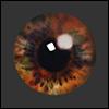 12mm Fantasy Flat Round Glass Eyes (FF10)