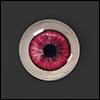 12mm - Omga Flat Round Glass Eyes (FE05)