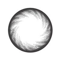 【Toric/6month】 KLARA Gray Toric / 1053 </br> DIA:14.0mm, G.DIA:13.4mm
