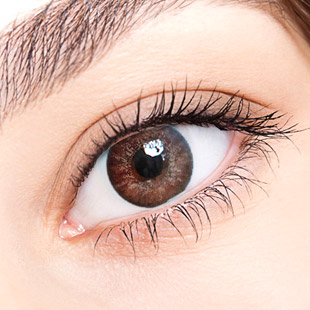 【 Yearly / 2 Lenses】 Chloe / 14.5mm / Brown   / 1005