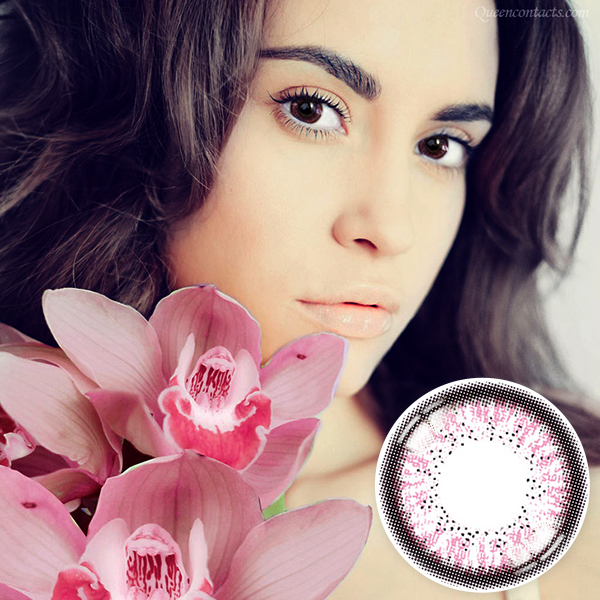 【Yearly / 2 Lenses】 Skinny Hazel Pink  /161