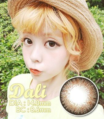 BEST 【遠視カラコン/ 2枚】  ダリエクストラ ブラウン Dali Extra Brown / 288</br>